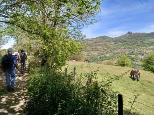 VINDONNUS. Ruta Fierros-Campumanes. 20190512 (17)