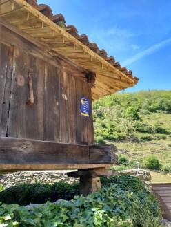 VINDONNUS. Ruta Fierros-Campumanes. 20190512 (22)