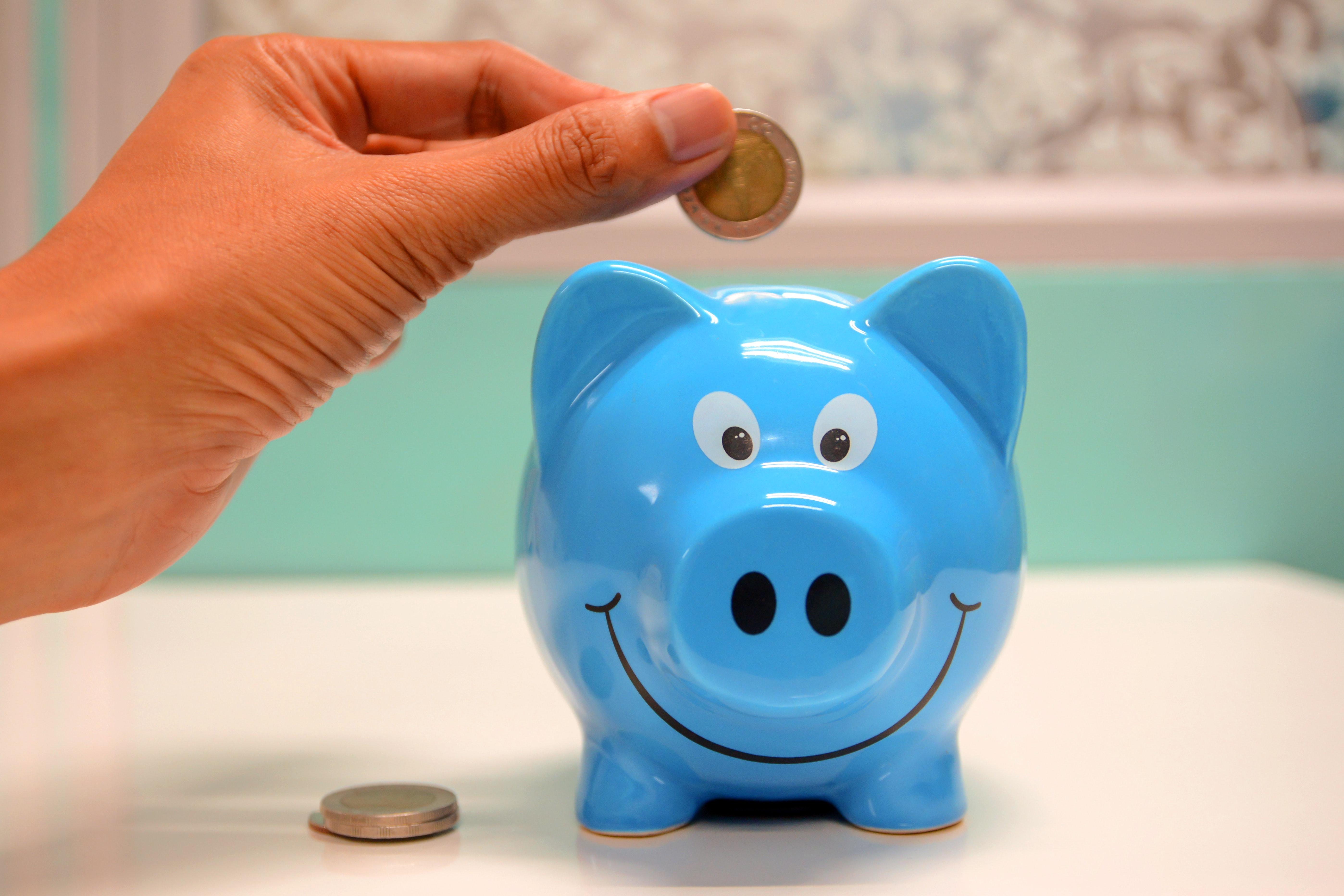 banking-cash-deposit-money-piggy-bank-savings-security-1556537